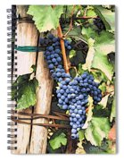 Grapes 1 Spiral Notebook