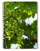 Grapes In A Vineyard Spiral Notebook