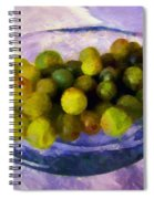 Grapes On The Half Shell Spiral Notebook