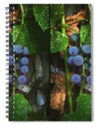 Grapes On The Vine - Gently Cross Your Eyes And Focus On The Middle Image Spiral Notebook
