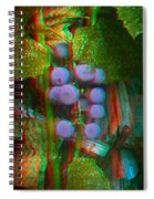 Grapes On The Vine - Use Red-cyan Filtered 3d Glasses Spiral Notebook
