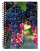 Grapes With Bokeh Spiral Notebook