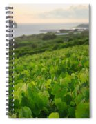 Grapevines And Islet Spiral Notebook
