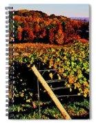 Grapevines In Vineyard, Traverse City Spiral Notebook
