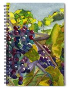 Grapevines Spiral Notebook