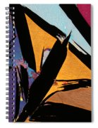 Graphite From India Spiral Notebook