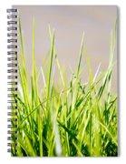 Grass Blades Spiral Notebook