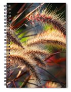 Grass Ears Spiral Notebook