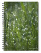Grass Fairies... Spiral Notebook