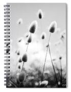 Grass Field Black And White Spiral Notebook
