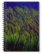 Grass In The Lake Spiral Notebook