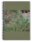 Grass In The Wind Spiral Notebook
