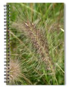 Grasses At Spaulding Pond Spiral Notebook