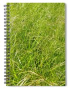 Grasses  Spiral Notebook