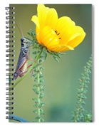 Grasshopper Be Still Spiral Notebook