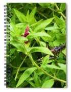 Grasshopper Spiral Notebook