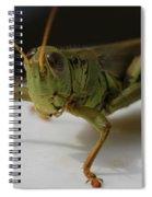 Grasshopper Spiral Notebook