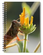Grasshopper Delight Spiral Notebook