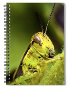 Grasshopper Macro 9402 Spiral Notebook