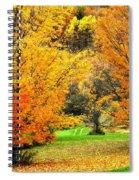 Grassy Autumn Road Spiral Notebook