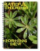 Grateful Dew Spiral Notebook