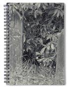 Gravesite Gearheart Oregon Spiral Notebook