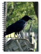 Graveyard Bird On Top Of A Tombstone Spiral Notebook