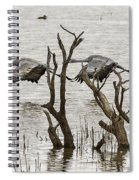 Gray Day At Whitewater Spiral Notebook