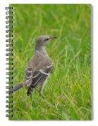 Gray-eyed Catbird Spiral Notebook