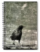 Abstract Gray Spiral Notebook