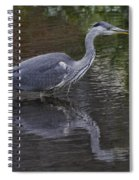 Gray Heron And Reflection Spiral Notebook