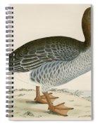 Gray Lag Goose Spiral Notebook