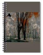Gray Mirage Spiral Notebook