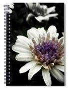 Gray Petals Spiral Notebook