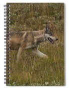 Gray Wolf Hunting Spiral Notebook