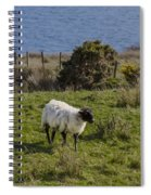 Grazing By The Sea Spiral Notebook