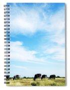 Grazing Cattle Spiral Notebook