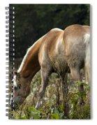 Grazing Days Spiral Notebook