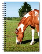 Grazing In Style Spiral Notebook