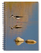 Grazing Stilts Spiral Notebook