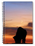 Grazing Under The Moon Spiral Notebook