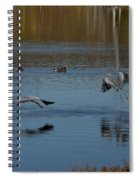 Great Blue Dance Spiral Notebook