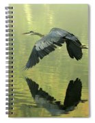 Great Blue Fly-by Spiral Notebook