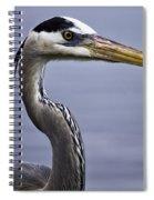 Great Blue Spiral Notebook