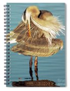 Great Blue Heron Ardea Herodias Preening Spiral Notebook