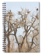 Great Blue Heron Colony Spiral Notebook