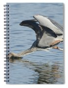 Great Blue Heron Fishing Spiral Notebook