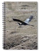 Great Blue Heron Flight Spiral Notebook