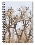 Great Blue Heron Hangout Spiral Notebook