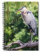 Great Blue Heron I Spiral Notebook